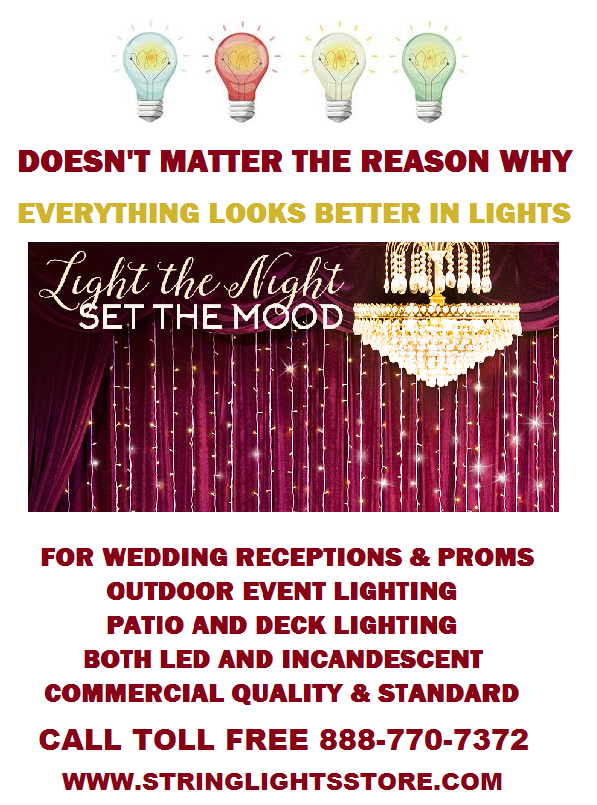 Come See All The New LED String Lighting at The String Lights Store