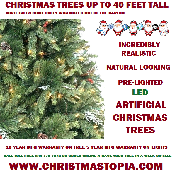 Lighted Christmas Trees Look So Real You Won't Be Able to Tell The Difference